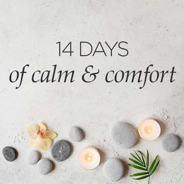 14 Days of Calm and Comfort